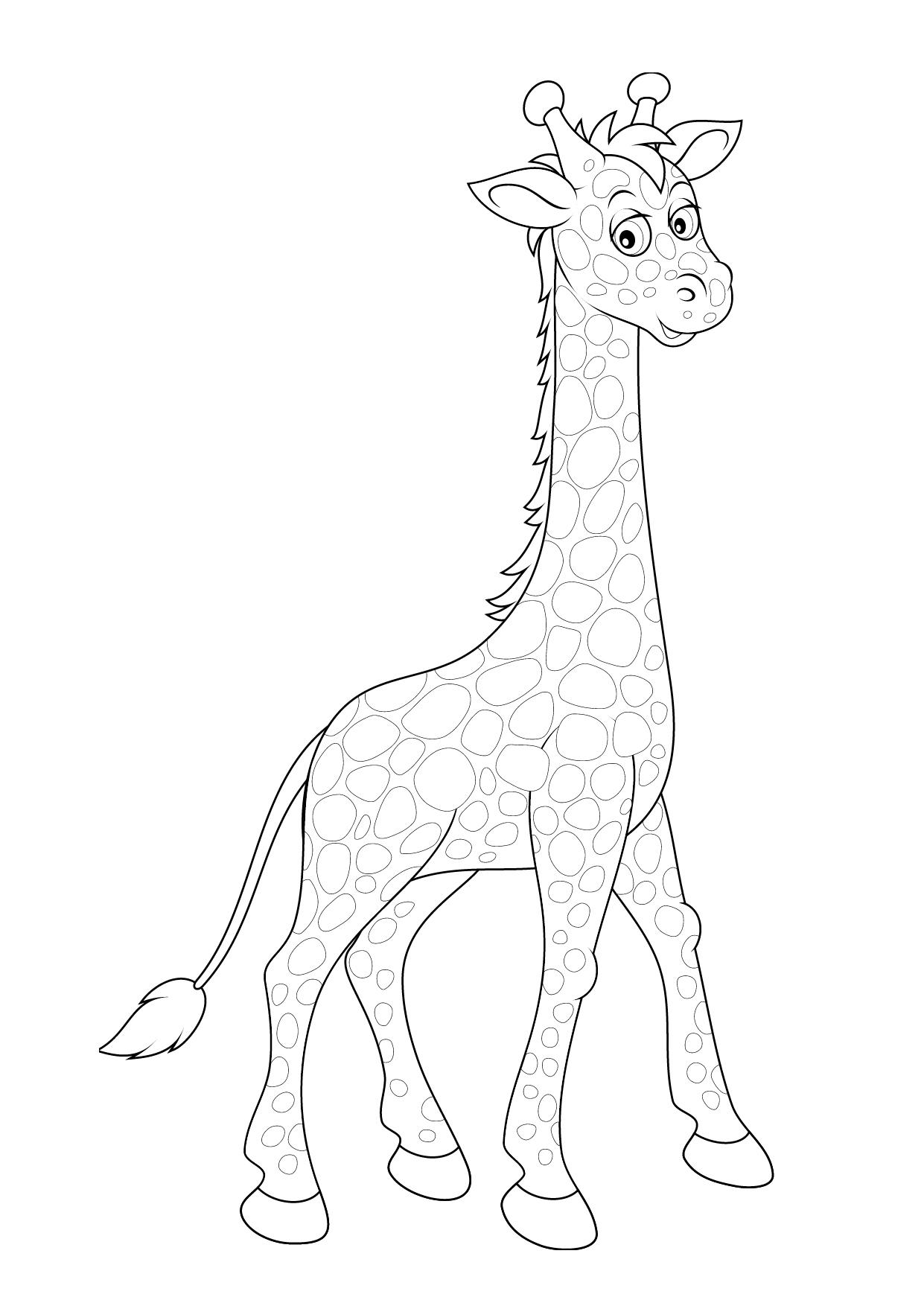 картинка раскраска для детей жираф