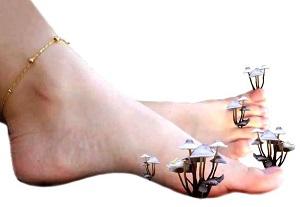 Грибок ногтей вызывают грибковые инфекции, которые опасны и тем, что передаются от носителя к здоровому человеку.
